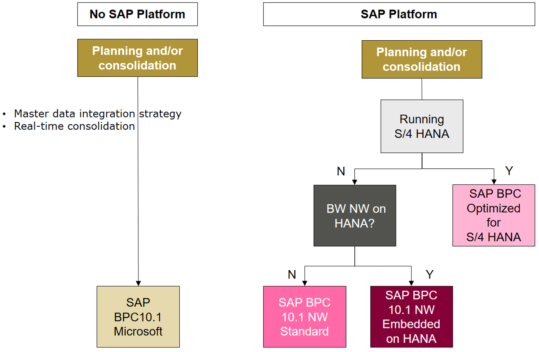 Decision tree SAP BPC