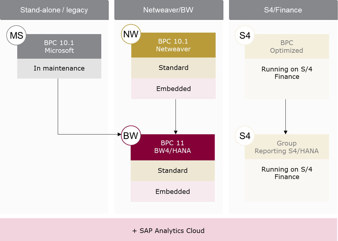 SAP BPC version stream